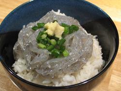 生しらす丼、静岡名物(焼津・用宗・由比)