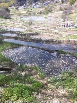 棚田の水温を調整する池