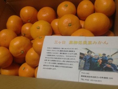静岡県産三ケ日みかん【黒柳農場】有機低農薬の早生みかん