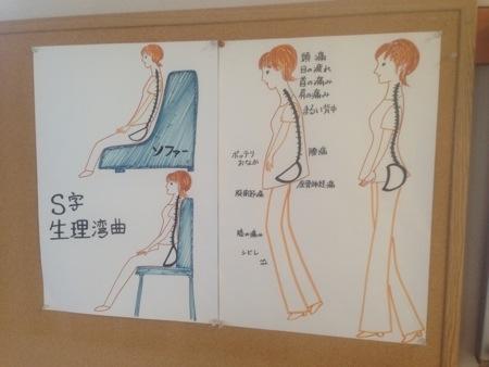 背骨・腰のS字曲線