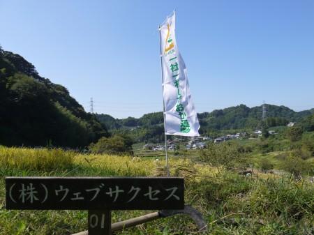 菊川市上倉沢の棚田