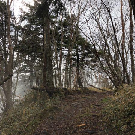 霧が濃くて寒かった