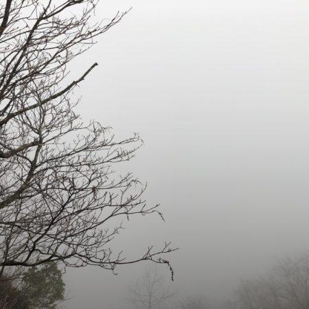 八紘嶺の富士見台
