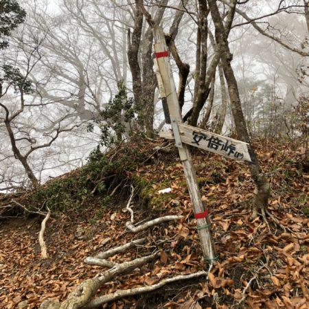 八紘嶺と安倍峠の分岐
