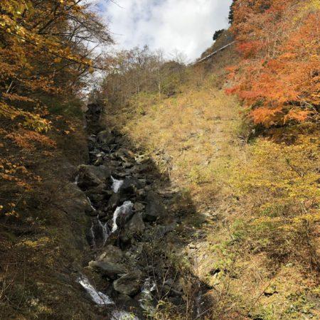 鯉ヶ滝(恋仇)