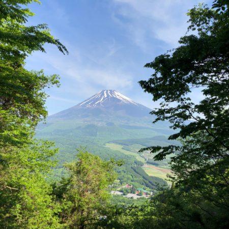 愛鷹山(前岳)