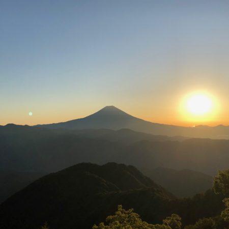 バラの段から見る富士山